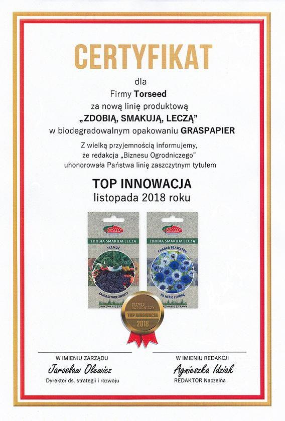 Top Innowacja.JPG